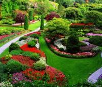 Que Significa Soñar con un Jardín?