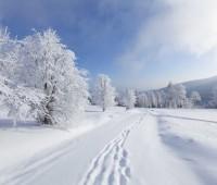 Que Significa Soñar con Nieve?