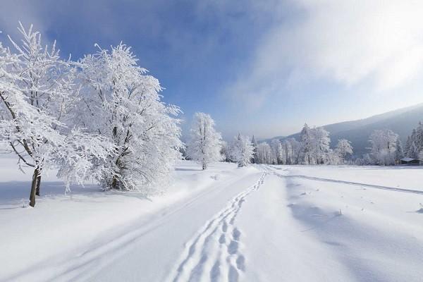 Que significa soñar con nieve