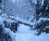Que Significa Soñar con Nieve cayendo?